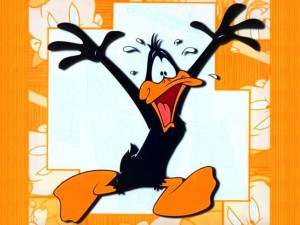 daffy_wall