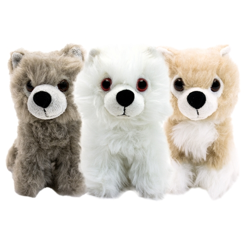 Direwolf Cub 6 Inch Plush Box Set
